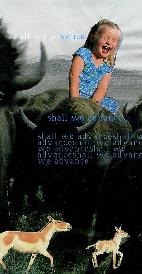 shallwe